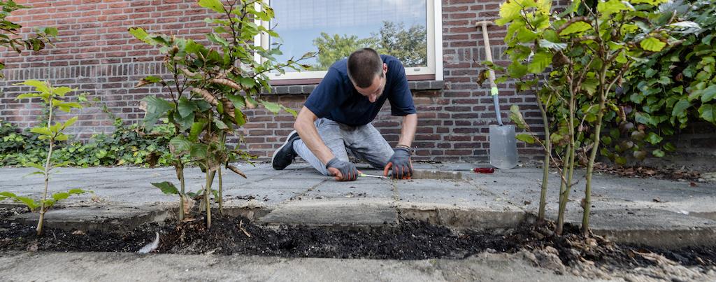 Groene Wijk Week 2021 - Groenworkshop - Foto Dave van Hout-